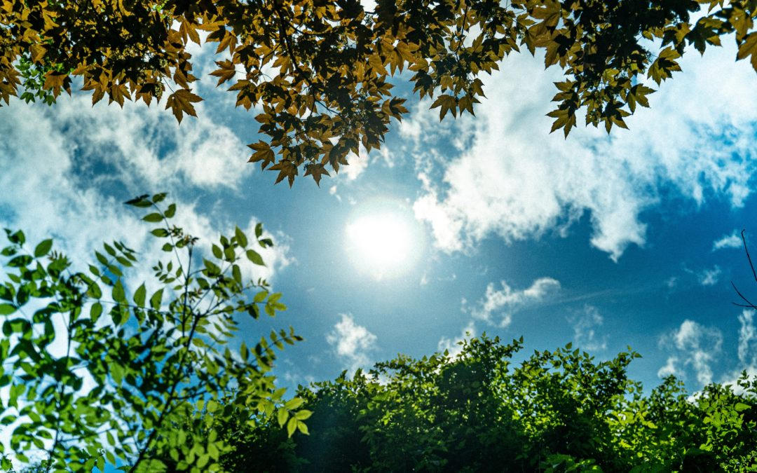 Sunlight And Its Numerous Benefits On The Body
